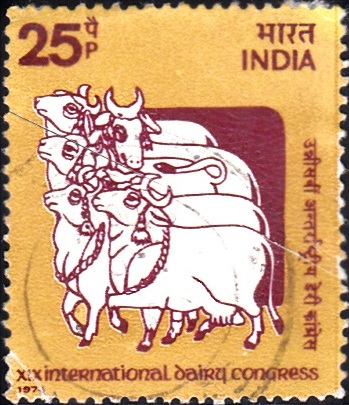 Krishna with Cows from Hand-printed Cloth of Rajasthan