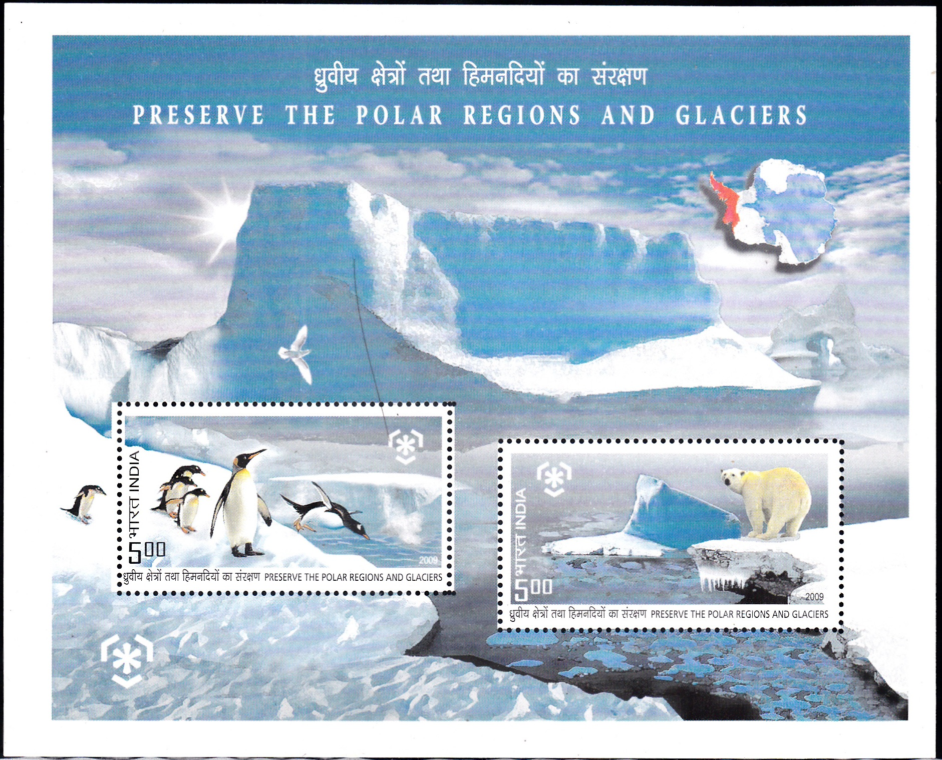 North and South Poles : Emperor Penguins & Polar Bear