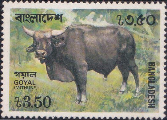 133 Gayal [Bangladesh Stamp 1977]