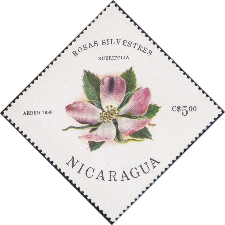 1497 Rubrifolia (Rosas Silvestres) [Nicaragua Diamond Airmail Stamp 1986]