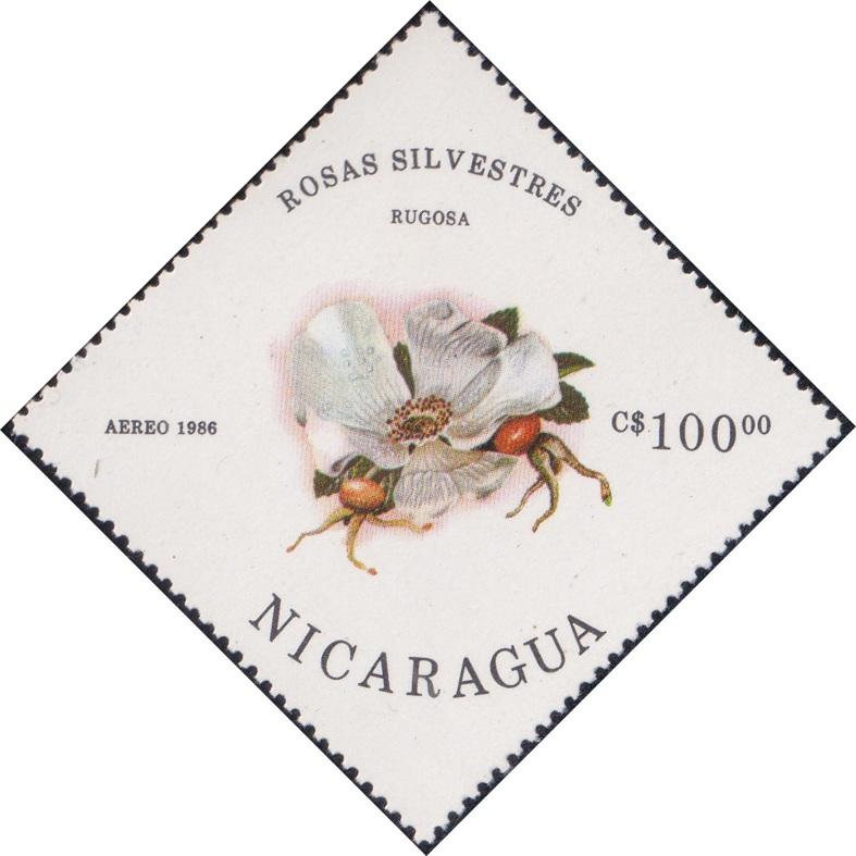 1499 Rugosa (Rosas Silvestres) [Nicaragua Diamond Airmail Stamp 1986]