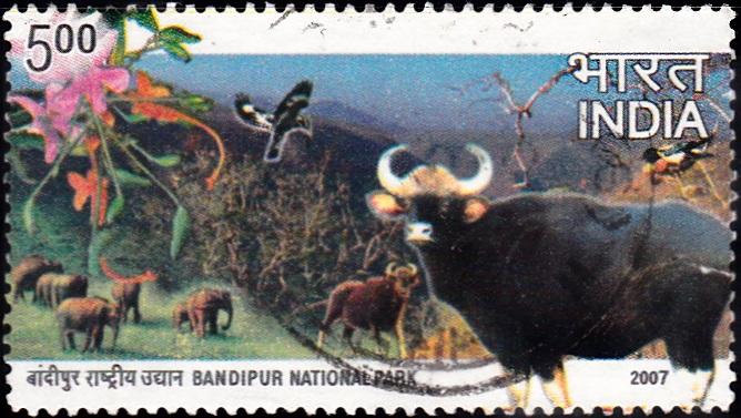 Bandipur Tiger Reserve And National Park (Karnataka)