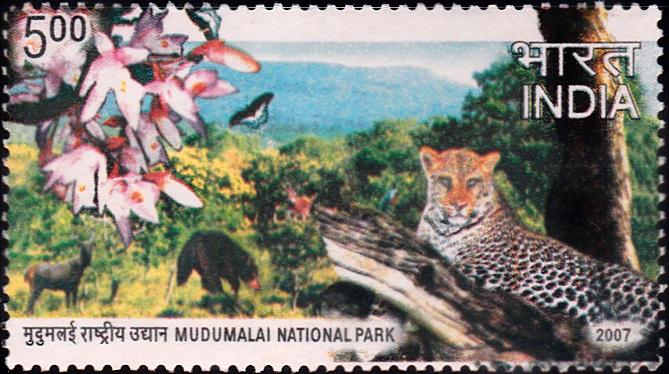 Mudumalai National Park and Wildlife Sanctuary, Nilgiri Hills, Tamil Nadu