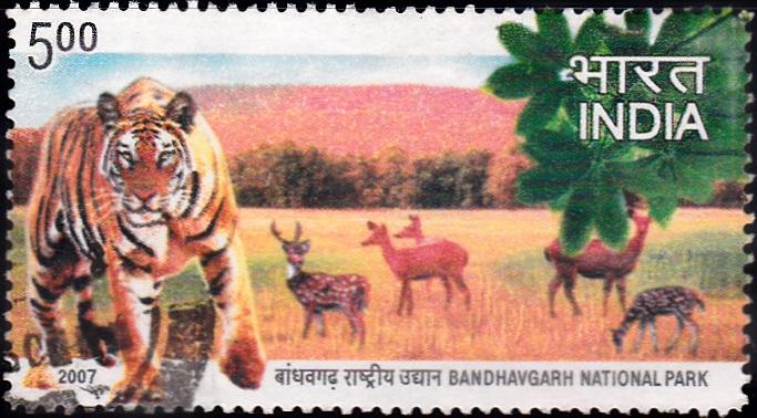 Bandhavgarh National Park (Madhya Pradesh)