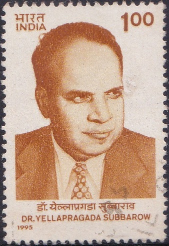 Yellapragada Subba Rao (యల్లాప్రగడ సుబ్బారావు)