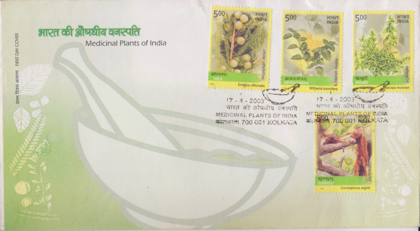 Guggulu, Brahmi, Ashwagandha & Amla