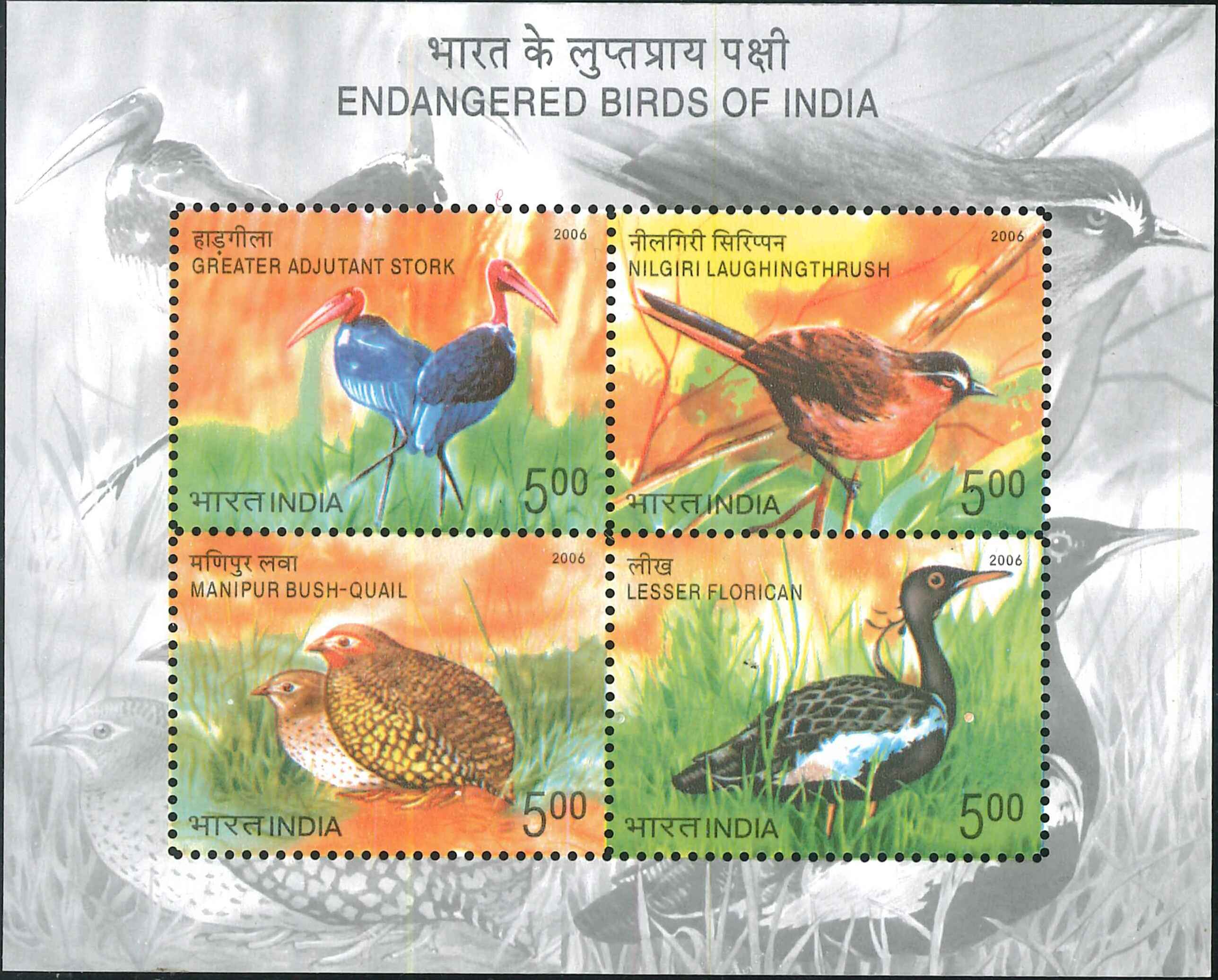 Manipur bush quail, Kharmore, Greater adjutant and Nilgiri laughingthrush