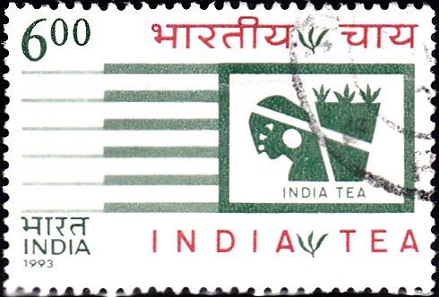 Indian Tea : Tea Plucker and Tea Leaves