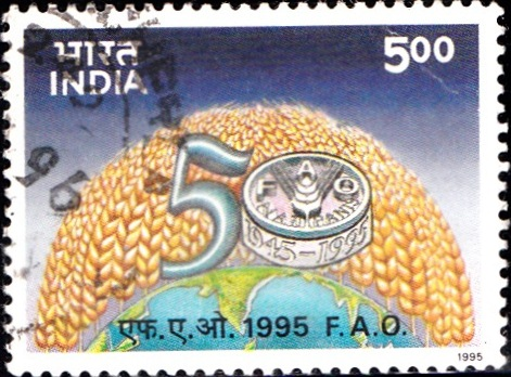 Food and Agriculture Organization of United Nations
